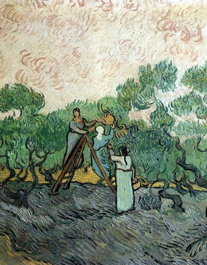 Dipinto la raccolta delle olive